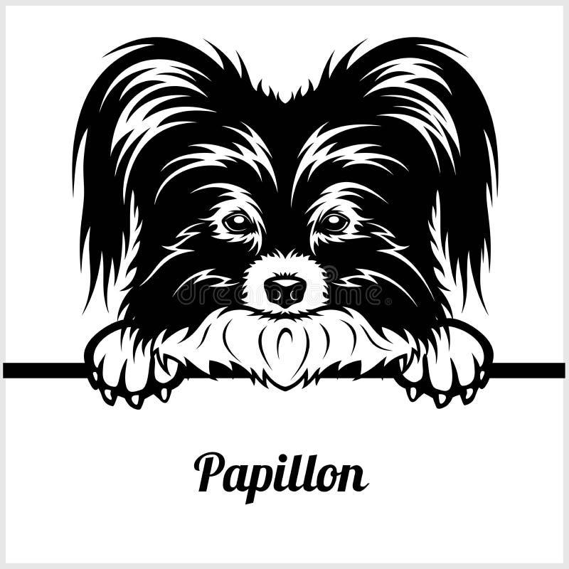 Papillon - dando una occhiata ai cani - - testa del fronte della razza isolata su bianco illustrazione vettoriale