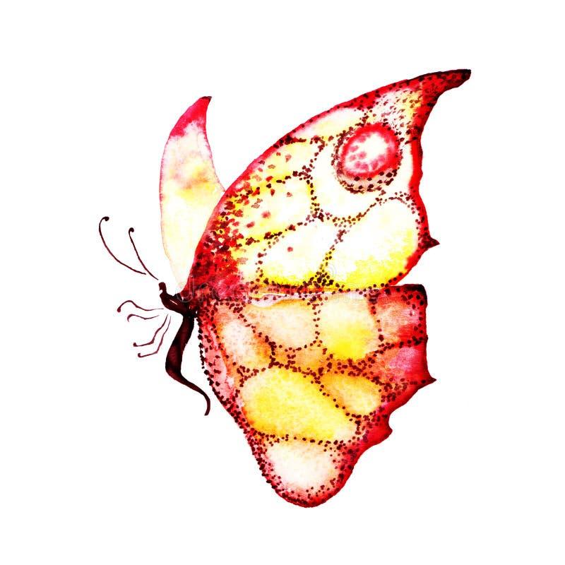 Papillon dans des couleurs jaunes et rouges sur un fond blanc dans le profil watercolor handmade illustration libre de droits