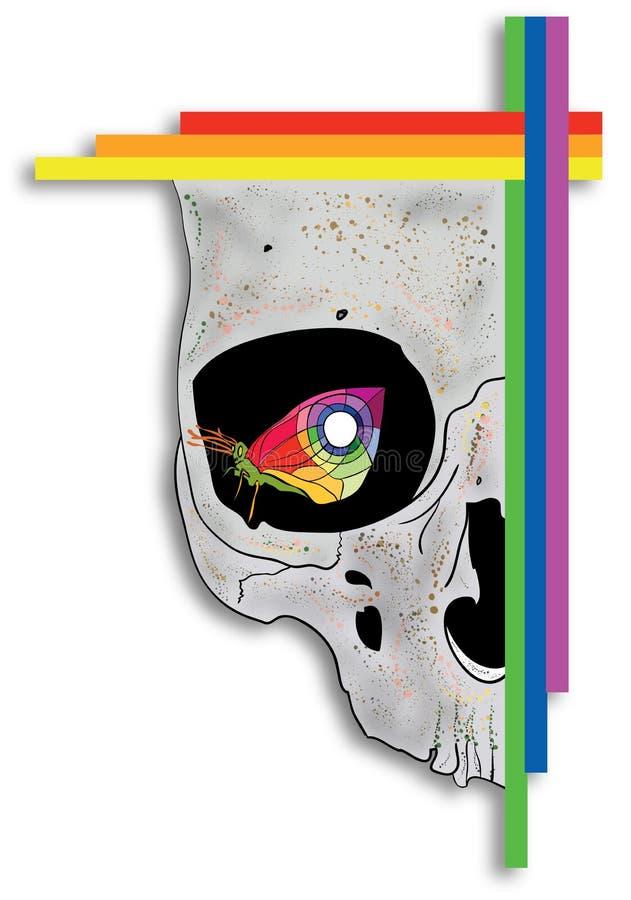 Papillon dans l'oeil de crâne image stock