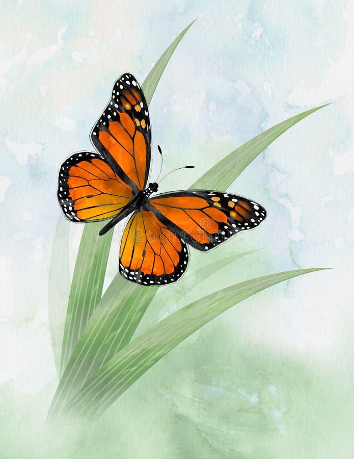 Papillon de monarque images stock