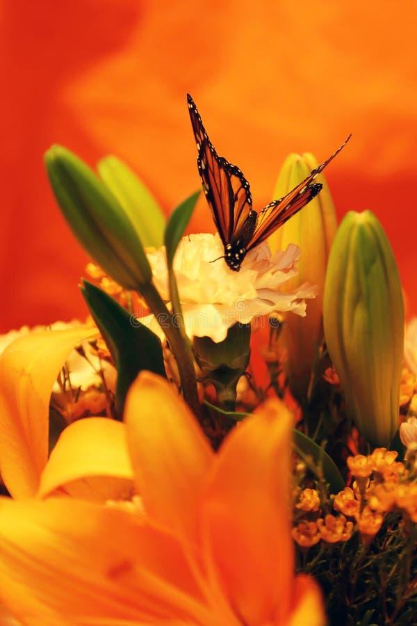 Papillon de monarque avec des lis et des oeillets photographie stock libre de droits