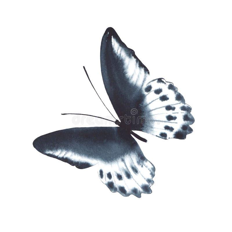 Papillon noir d'aquarelle d'isolement sur le fond blanc photographie stock libre de droits