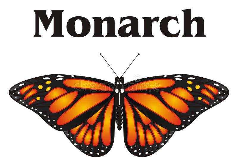 Papillon orange et son nom illustration libre de droits
