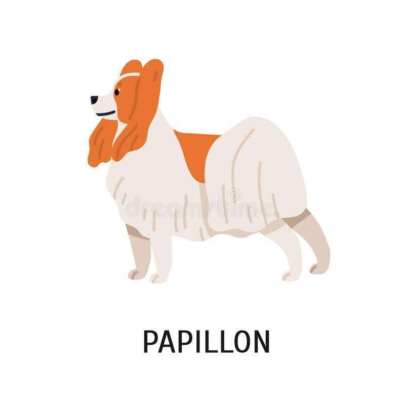 Papillon ou Toy Spaniel continental Beau petit chien de recouvrement d'isolement sur le fond blanc Petit animal de race adorable  illustration de vecteur
