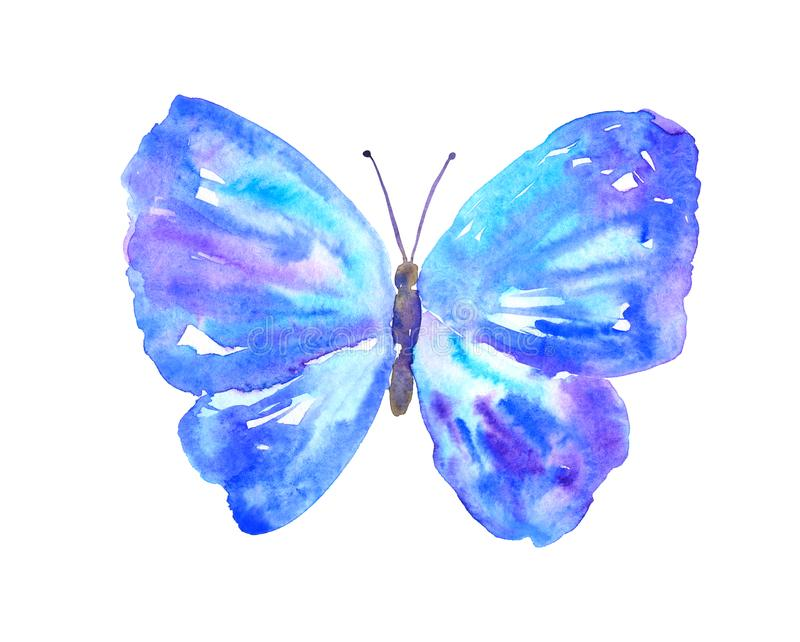 Papillon pourpre bleu Illustration tir?e par la main d'aquarelle D'isolement sur le fond blanc illustration libre de droits