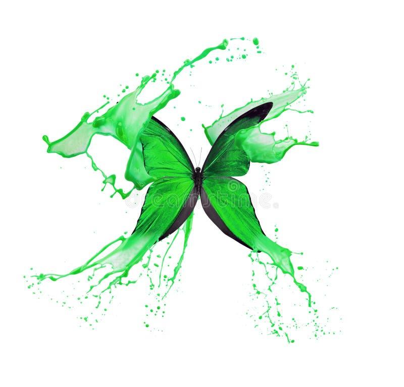 Papillon vert dans l'éclaboussure de peinture d'isolement sur un fond blanc illustration libre de droits