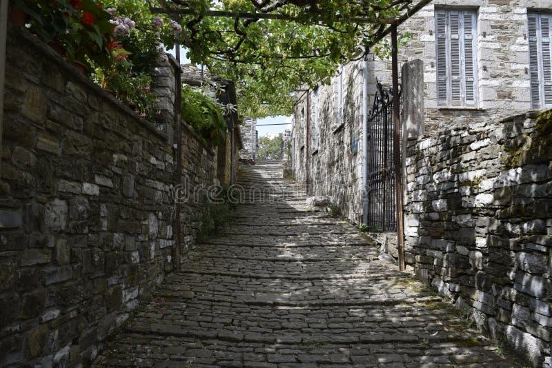 Papingo är en vilage i Ioannina den regionala enheten, Epirus, Grekland royaltyfri fotografi
