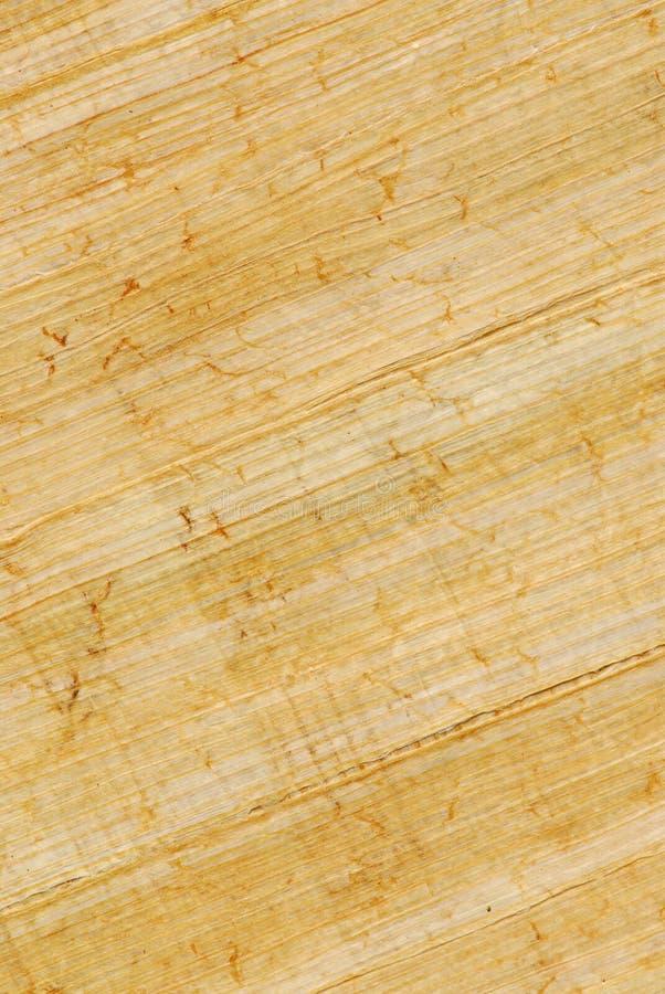 Download Papiro foto de archivo. Imagen de antigüedad, egipcio - 1291798