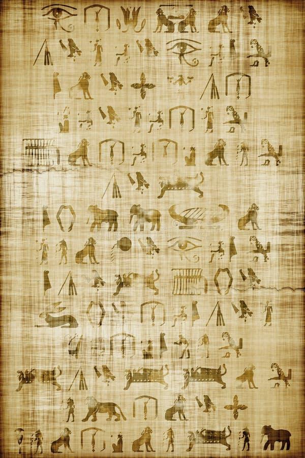 Papiro ilustração do vetor