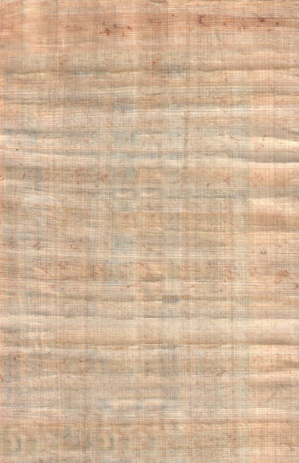 Papiro fotografie stock