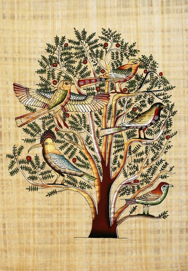 papirus ilustracji