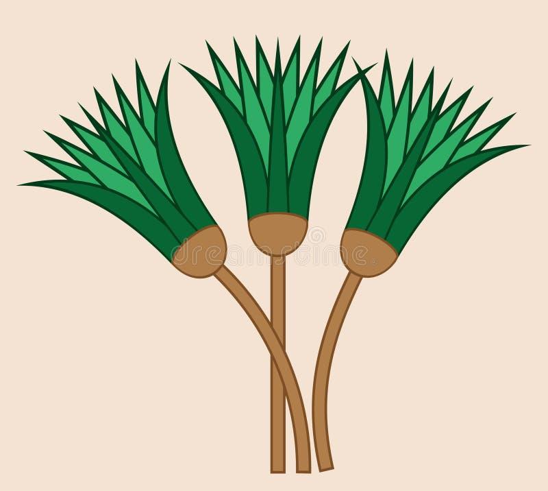 Papirusowy roślina dyszel Antyczny Egipt Wektor i ilustracja ilustracji