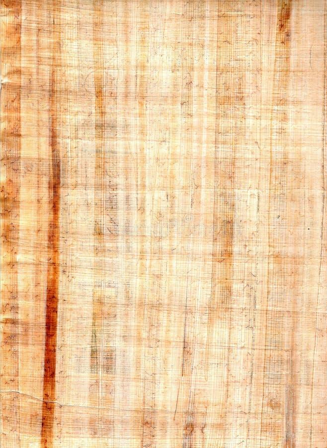 papirusu prześcieradło obrazy royalty free