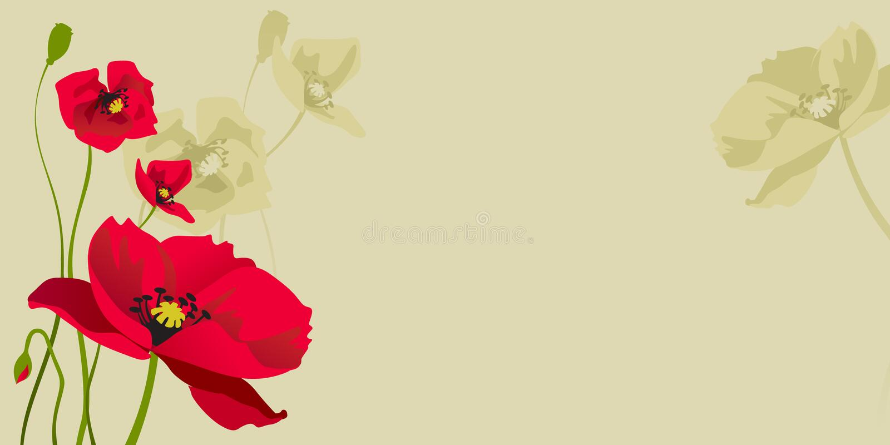 Papoila estilizado vermelha ilustração royalty free