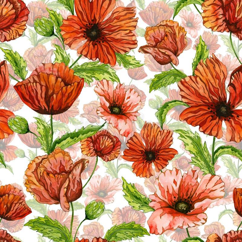 A papoila vermelha bonita floresce em hastes verdes com as folhas no fundo claro Teste padrão floral sem emenda Pintura da aguare ilustração do vetor