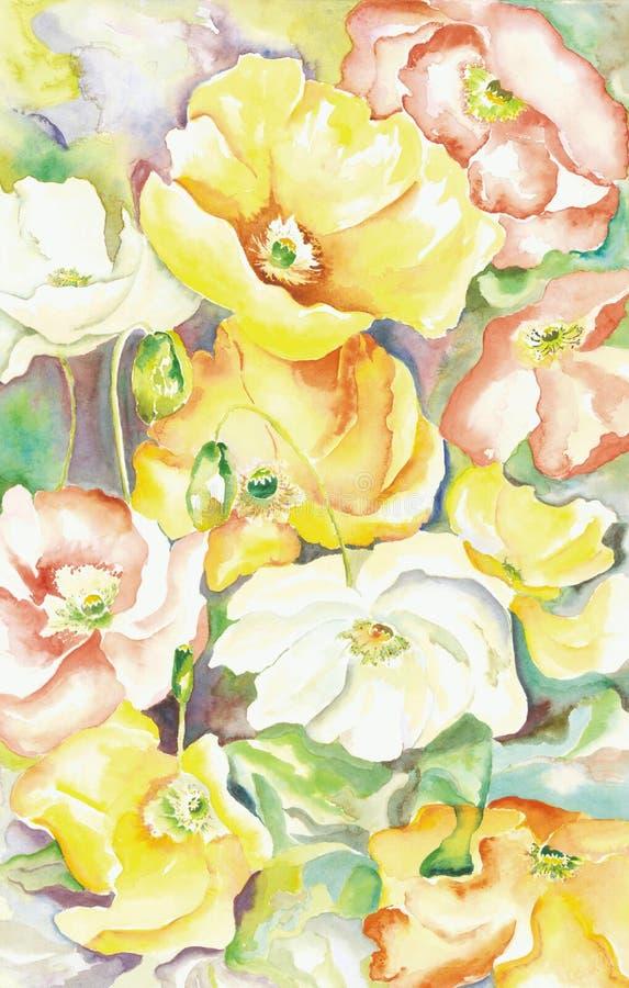 Papoilas orientais pintadas ilustração stock