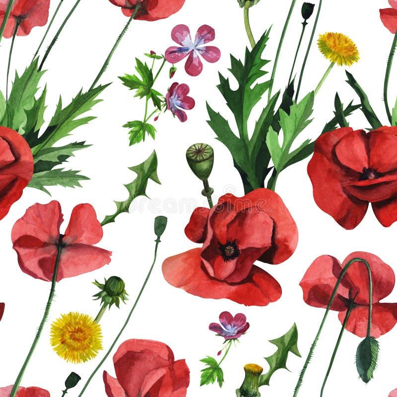 Papoilas vermelhas selvagens da aquarela Projeto de superfície para a decoração interior, edições impressas ilustração stock