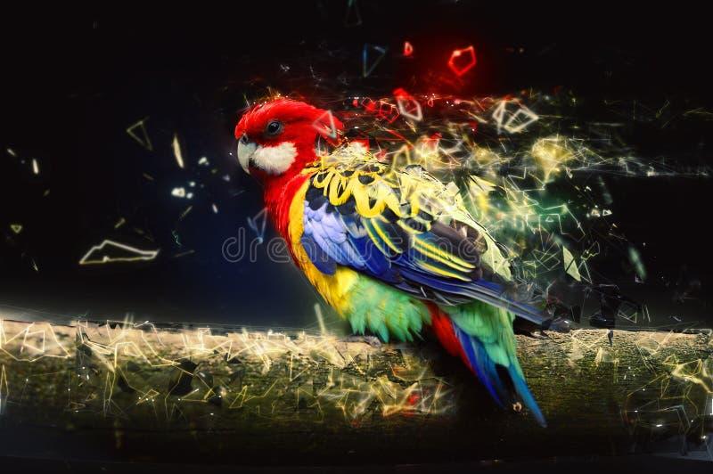 Pappagallo sul ramo, concetto animale astratto fotografia stock