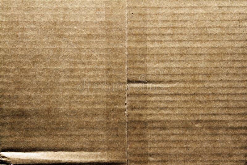 Pappe lizenzfreie stockbilder
