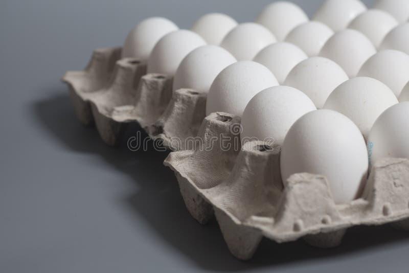 Pappeikasten mit Hühnerweißen eiern stockfotografie