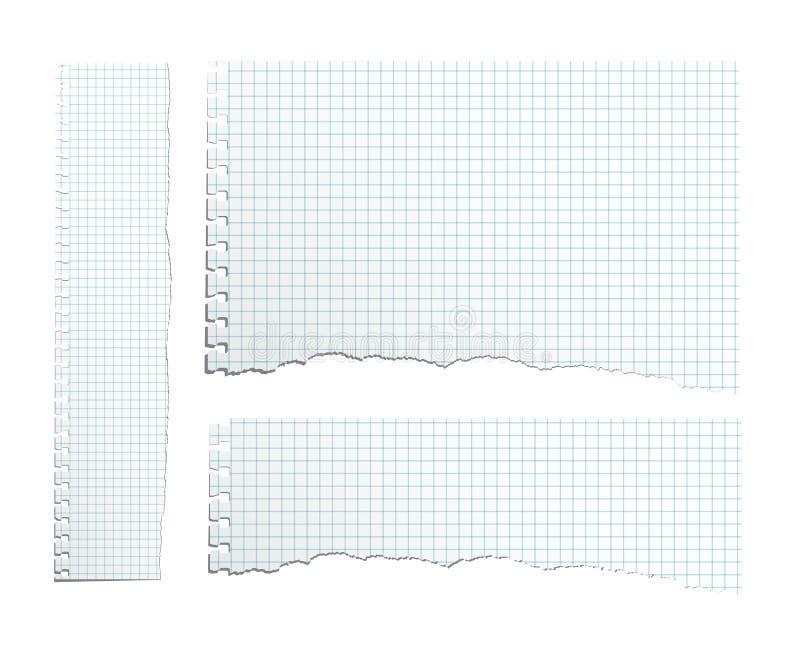 Papper för förskriftsbok för olik proportion för vektor sönderrivet Sönderriven förskriftsbokarkuppsättning stock illustrationer