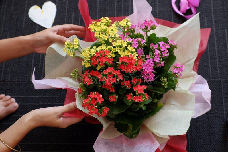 Papper för kvinnahandinpackning för färgrik blomkruka på svart bakgrund royaltyfria foton