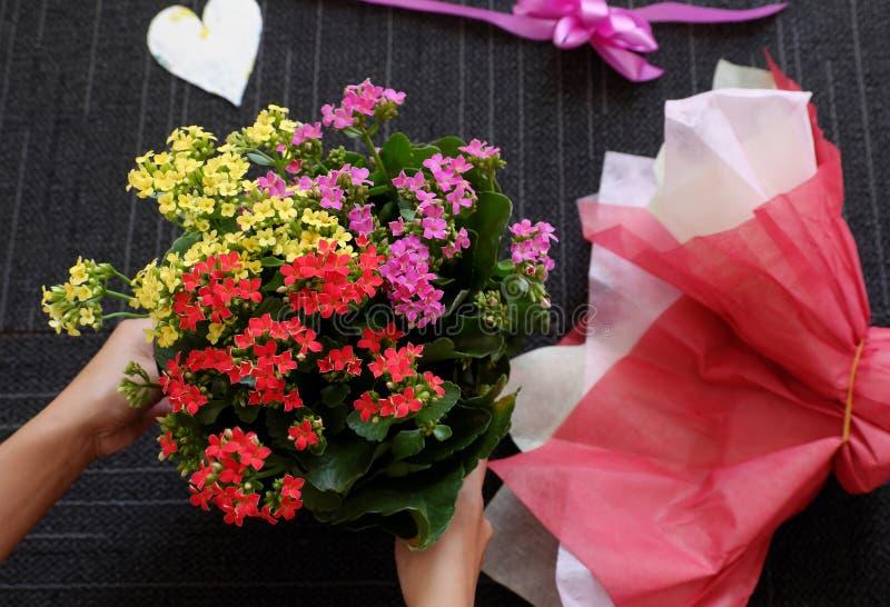 Papper för kvinnahandinpackning för färgrik blomkruka på svart bakgrund arkivfoto
