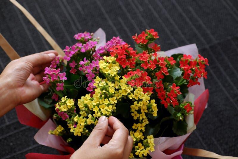 Papper för kvinnahandinpackning för färgrik blomkruka pÃ¥ svart bakgrund fotografering för bildbyråer