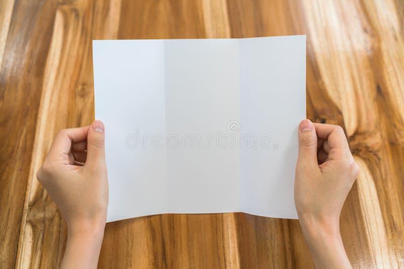 Papper för mall för kvinnahandhåll Trifold vitt på wood textur royaltyfri foto
