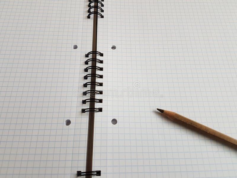 Pappers- anteckningsbokark tömmer mellanrumet kvadrerade linjer spiral kontorssida royaltyfri fotografi