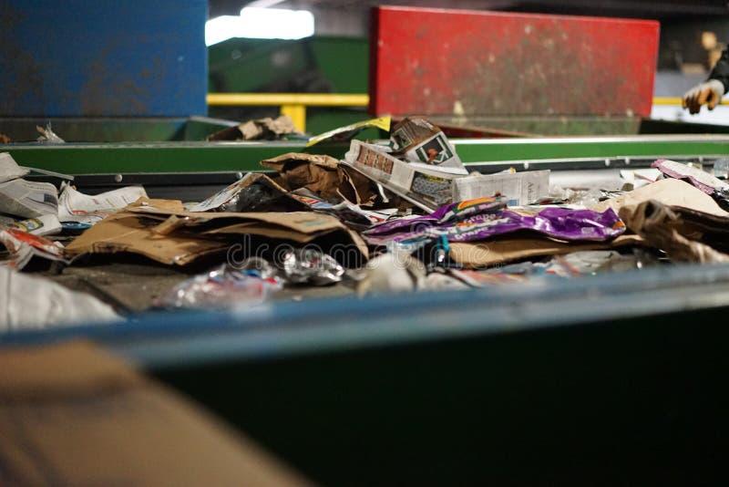 Pappers- avfalls på transportbandet på återvinningmitten royaltyfria bilder