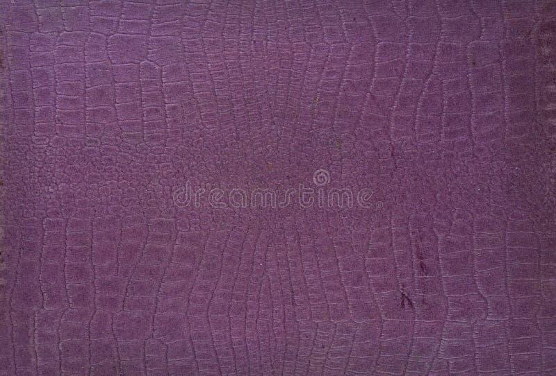 Pappers- modell för texturkrokodilhud royaltyfria foton