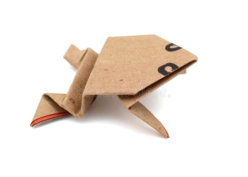 Pappers- origami för groda royaltyfri fotografi