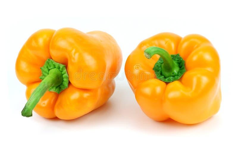 Paprica colorata (pepe) isolata su un fondo bianco immagini stock