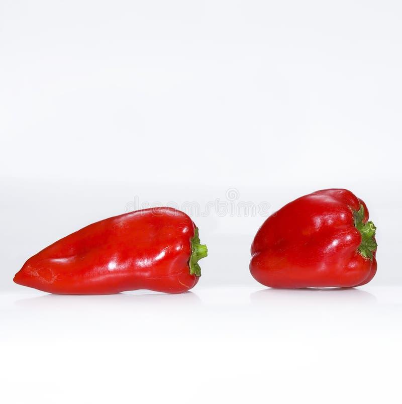 Paprika stock image