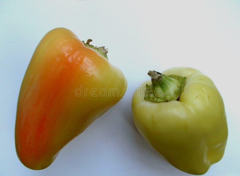 Paprika stockfotos