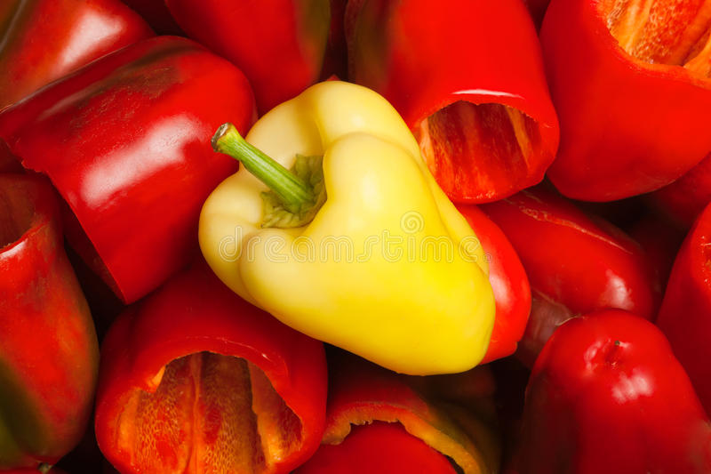 Paprika. Red and yellow paprika background stock photography