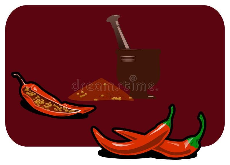paprika illustration stock