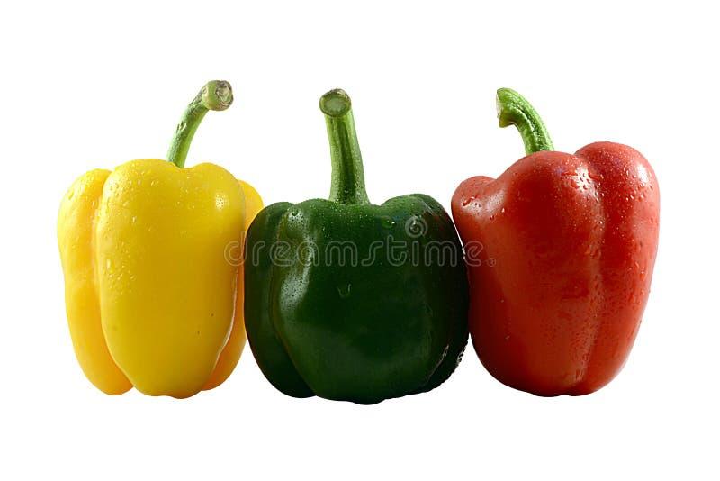 Paprika colorida (pimenta) isolada em um fundo branco foto de stock