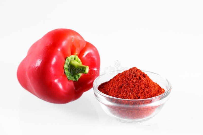 Paprika Isolated rouge sur le backgrounde blanc image stock