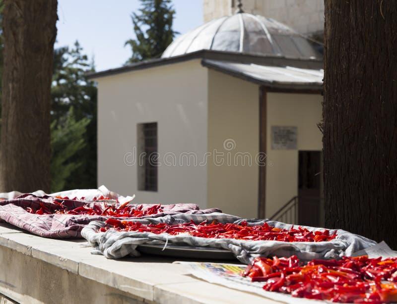 Paprika roja que es secada debajo del sol delante de un edificio islámico, Elmali, Antalya, Turquía foto de archivo