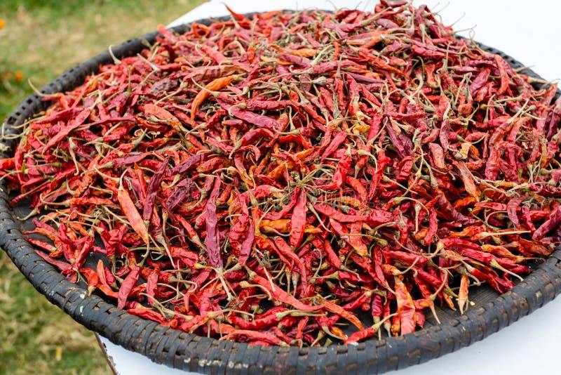 Paprika's, opgerold, warm gedroogd Traditionele mexicaanse cuisine Gezonde vegaanvoeding stock afbeeldingen