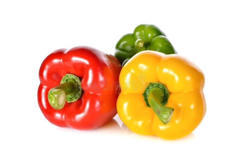 Paprika vert, rouge, jaune frais de tige sur le backgrou blanc images stock