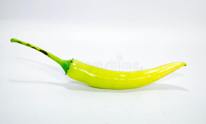 Paprikagrün stockfotografie