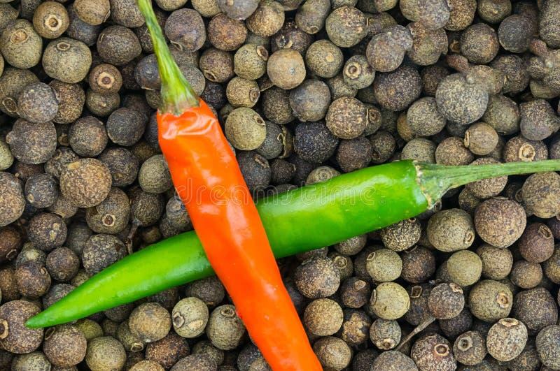 Paprikakreuzte grüne rote helle Gemüsesoßenbasis Basisdesignkochen des schwarzen Pfeffers der Erbsen des Hintergrundes das große stockfoto