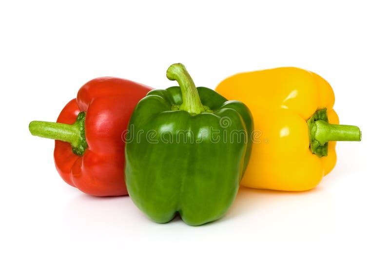 Paprikas rojas, verdes y amarillas fotografía de archivo