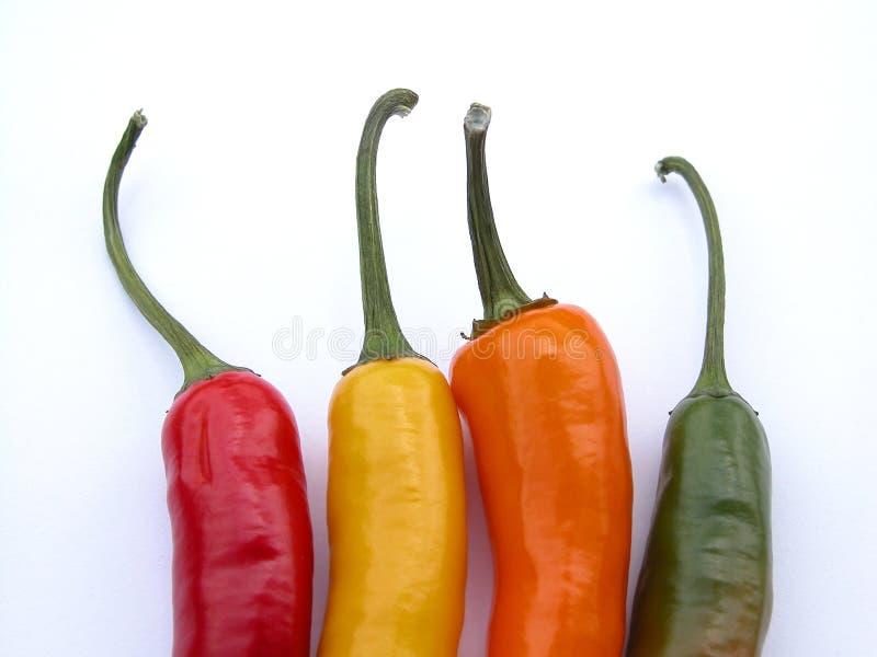 Download Papryka chili obraz stock. Obraz złożonej z jedzenie, czerwień - 143617