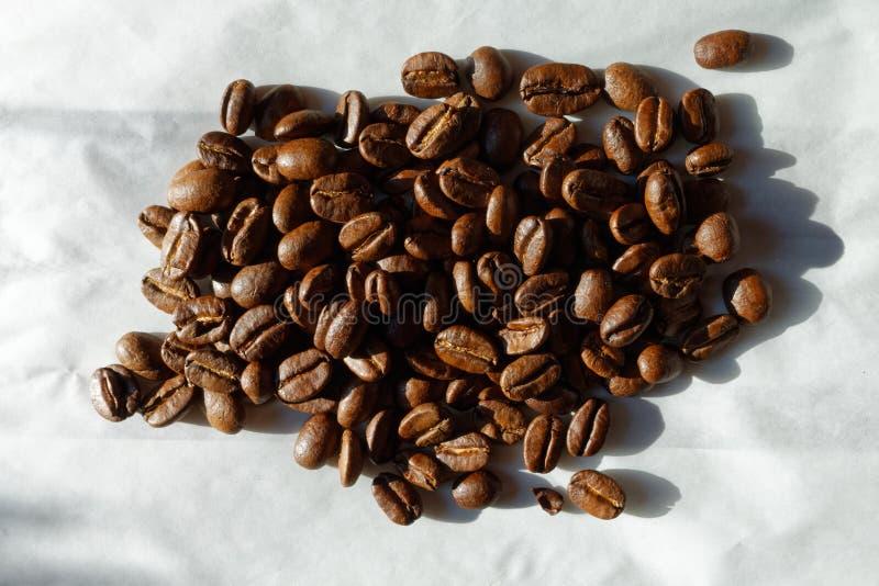 Papua New Guinea coffee. Grains of Papua New Guinea coffee, medium roast royalty free stock photos