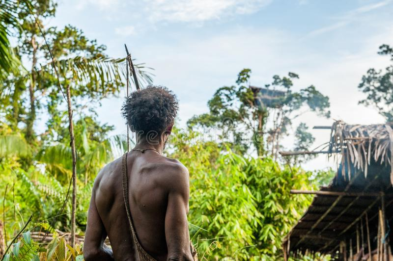 The Papuan from a Korowai tribe, live in the houses built on trees. On a background traditional Koroway house perched in a tree. INDONESIA, NEW GUINEA, IRIAN stock photography