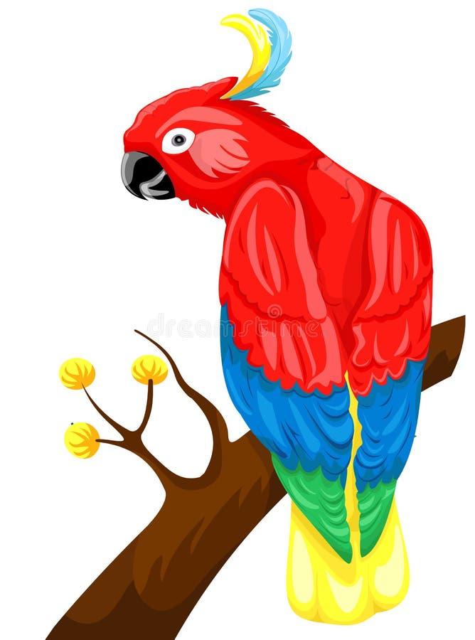 papuga royalty ilustracja